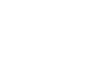 FiddleStitches by Melissa Hoffman